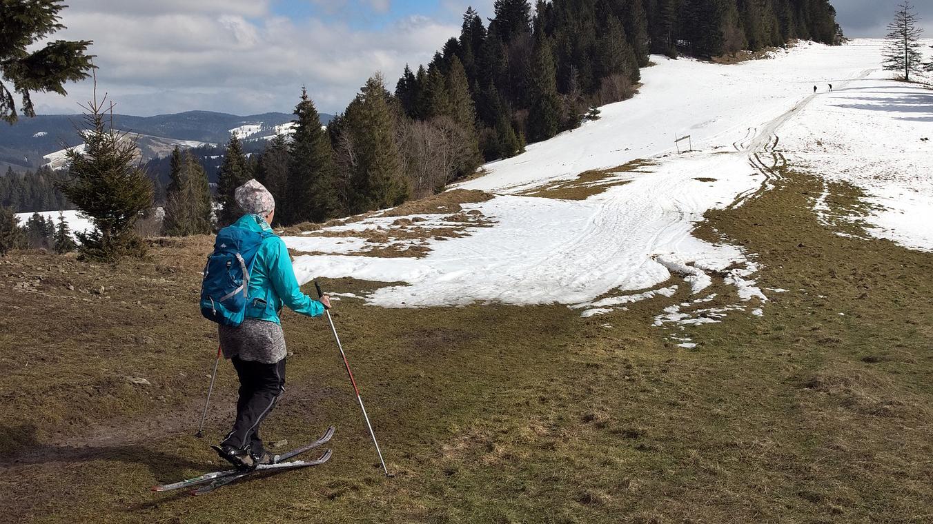 Skifahrer auf Wiese